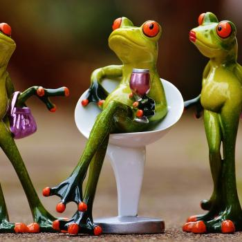Drink-Frogs-Funny-Celebrate-Cute-Chick-Party-1234566-1-.jpg
